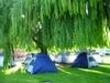 Tent_city